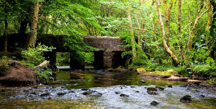 Draynes Bridge