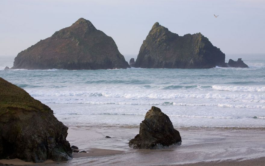 Gull Rocks - Holywell Bay