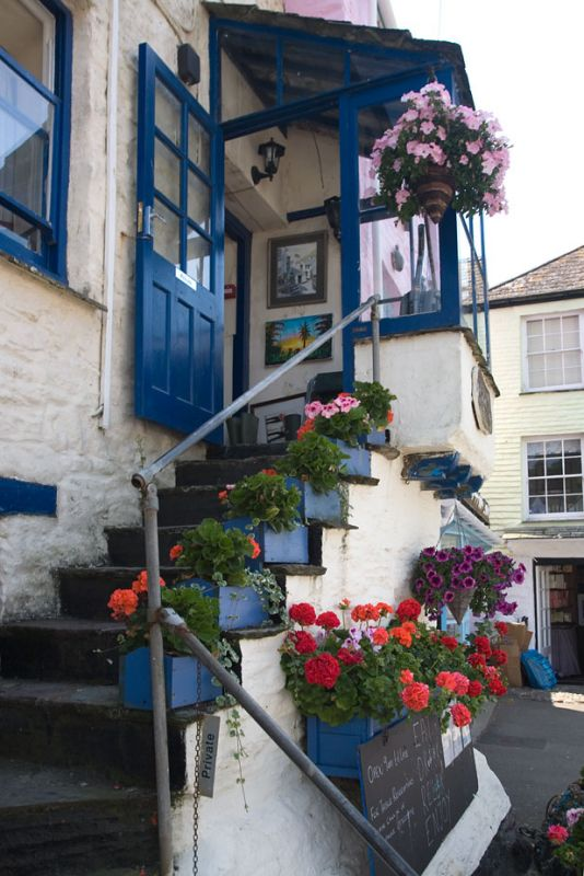 Flowers and steps - Polperro