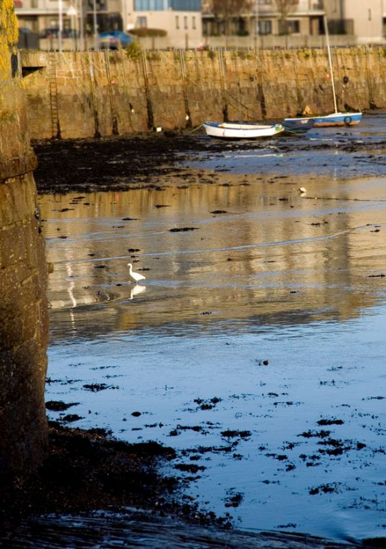 Penzance Harbour - Low Tide
