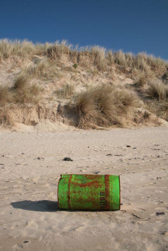 Beach Debris - Rock