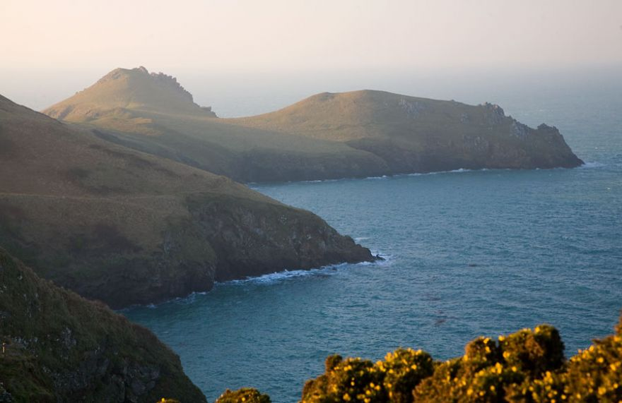 The Rumps from the East
