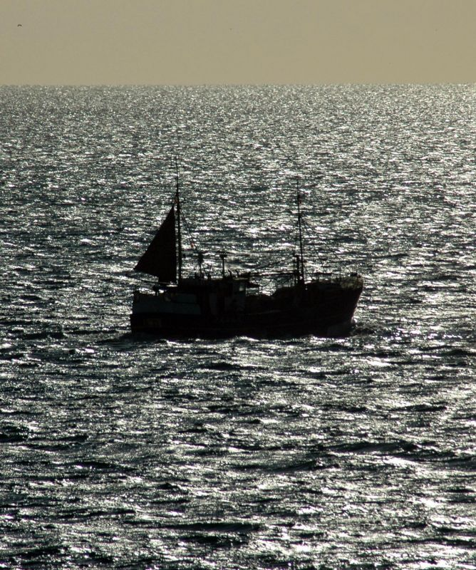 Trawler in Sparkley Sea