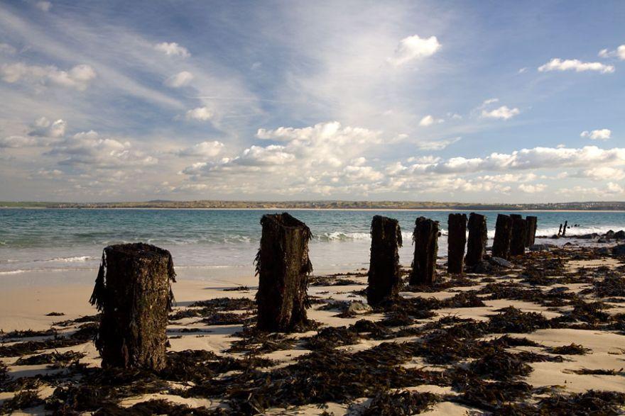 Wood Pier Stumps - St Ives
