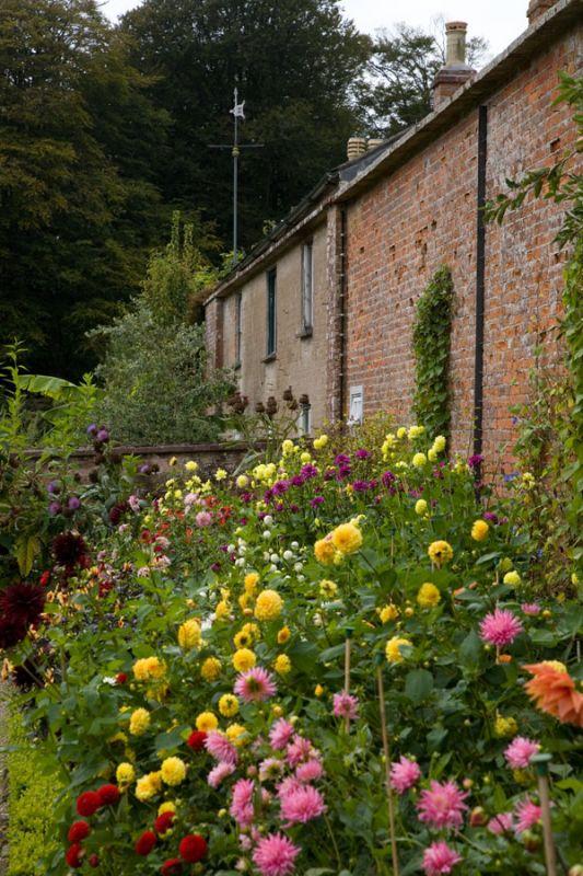 Trengwainton - Walled Garden
