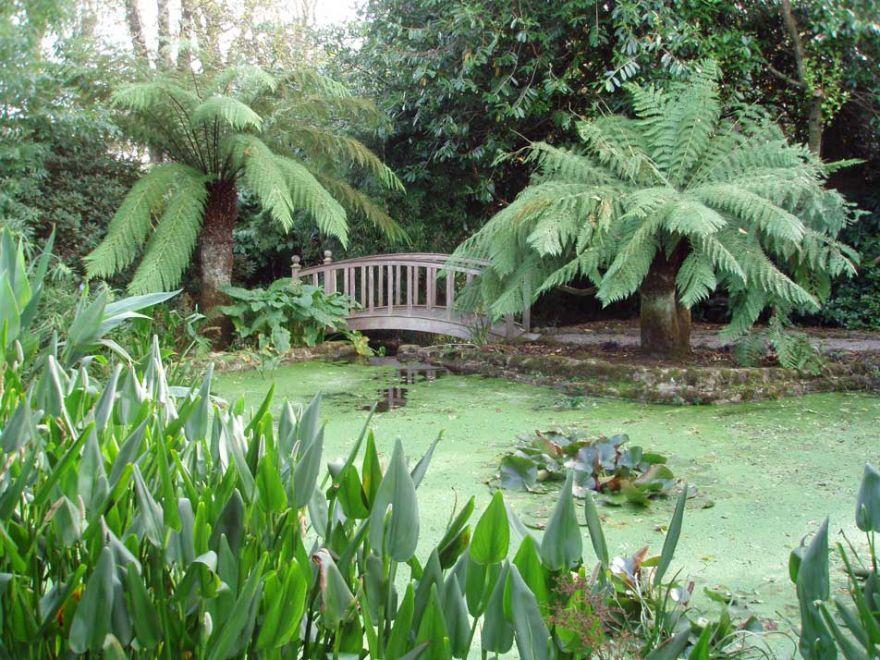 Trengwainton Gardens