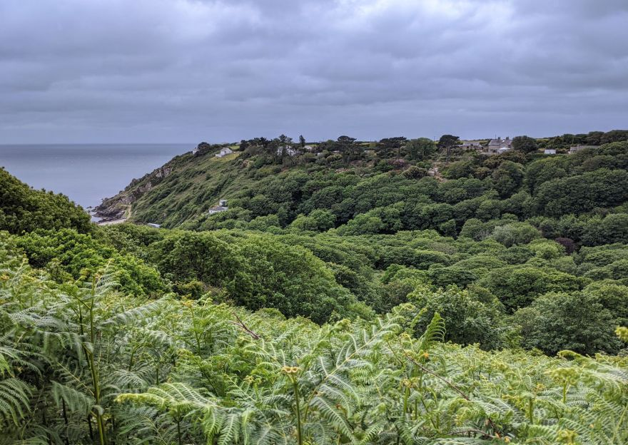 View Over Lamorna Valley