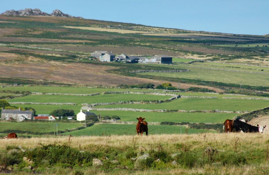West Cornwall Farming