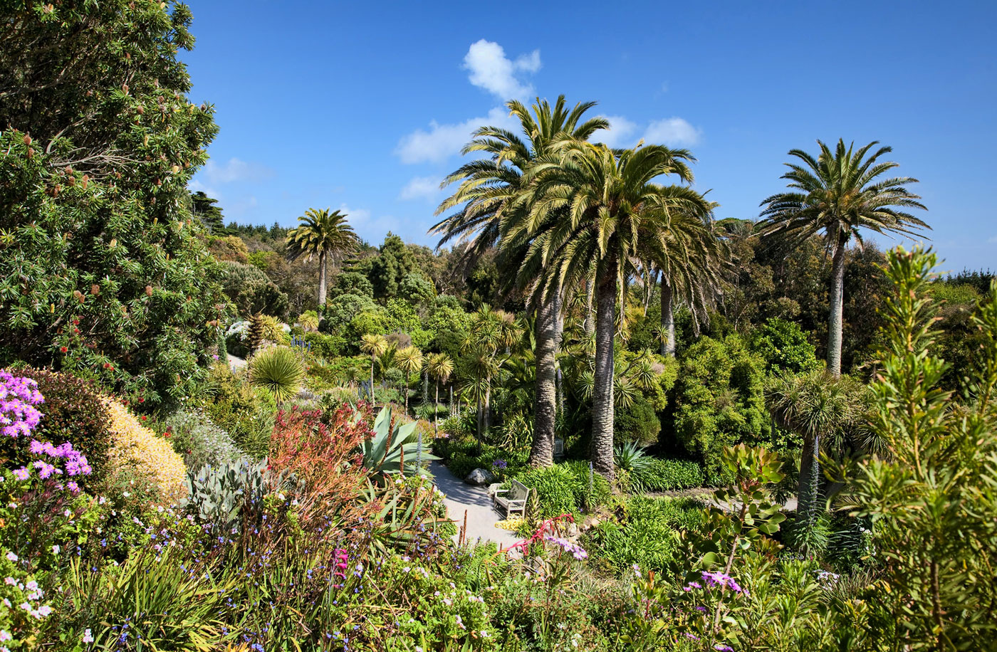 Tresco Abbey Gardens Isles Of Scilly Cornwall Guide